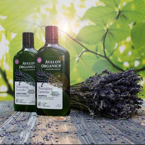 Avalon Økologisk Shampoo & Conditioner Lavender Nourishing