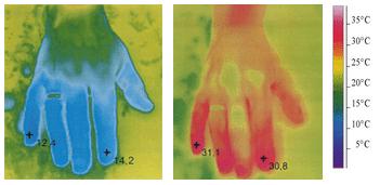 Termofotografi af en hånd i koldt vand med brug af Ginkgo